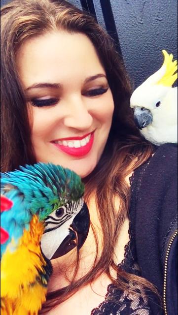 nat-parrot